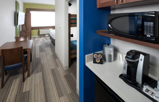 Chambre Holiday Inn Express & Suites ORLANDO AT SEAWORLD