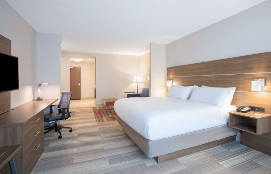 Suite Holiday Inn Express & Suites OWINGS MILLS-BALTIMORE AREA