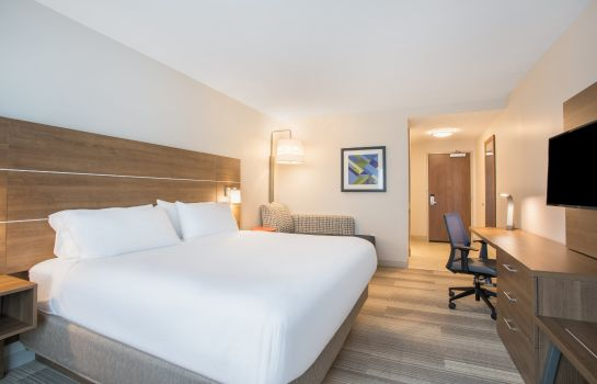 Habitación Holiday Inn Express & Suites OWINGS MILLS-BALTIMORE AREA