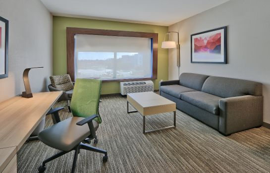 Info Holiday Inn Express & Suites ROSWELL