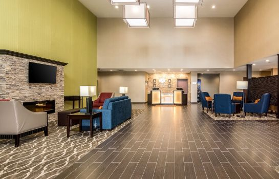 Hotelhalle Comfort Suites Airport on Meridian