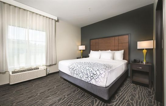 Suite La Quinta Inn and Suites Branson - Hollister