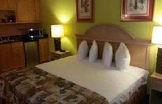 Room BUDGETEL KISSIMMEE EAST