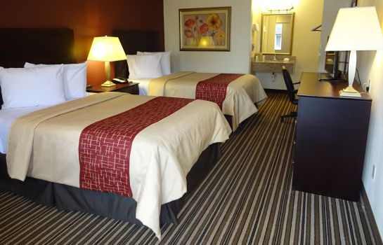 Chambre Red Roof Inn Indianapolis - Castleton
