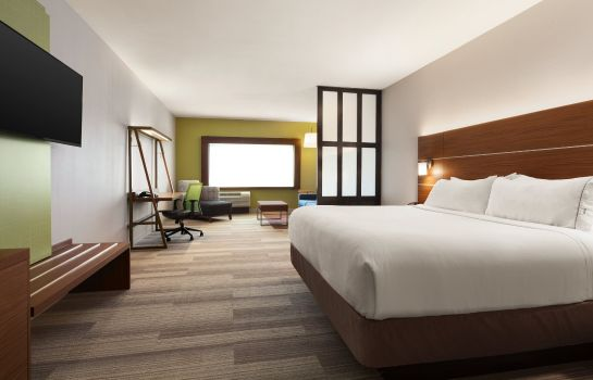 Suite Holiday Inn Express & Suites MCALLEN - MEDICAL CENTER AREA