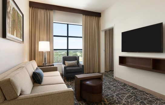 Suite Embassy Suites San Antonio Brooks Hotel - Spa