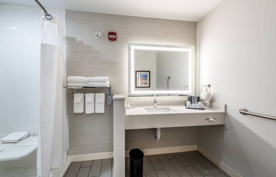Suite Fairfield Inn & Suites St. Joseph Stevensville