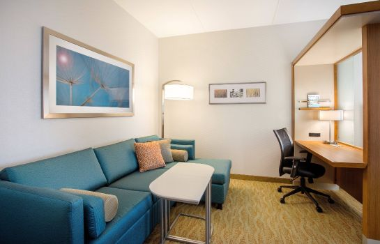 Suite SpringHill Suites Mt. Laurel Cherry Hill