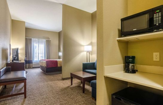 Suite Comfort Inn and Suites Augusta