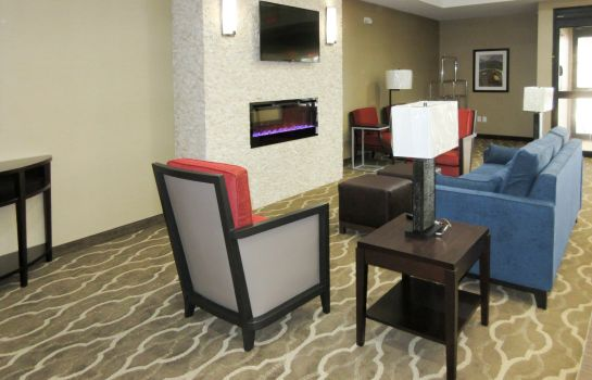 Hall de l'hôtel Comfort Suites Greenville South