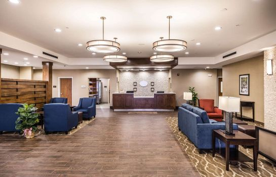 Hol hotelowy Comfort Suites Greenville South