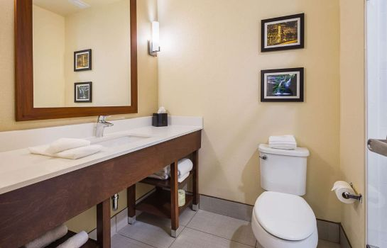 Suite Comfort Suites Greenville South