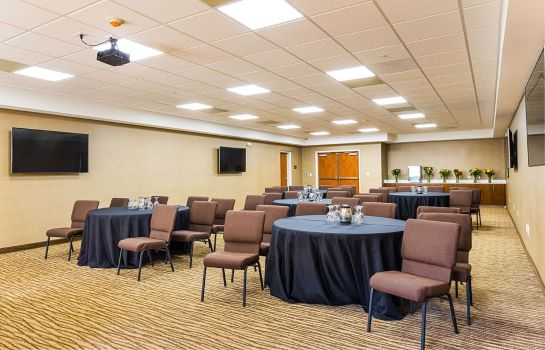 Sala konferencyjna Comfort Suites Greenville South