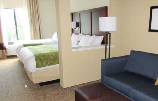 Kamers Comfort Suites Greenville South