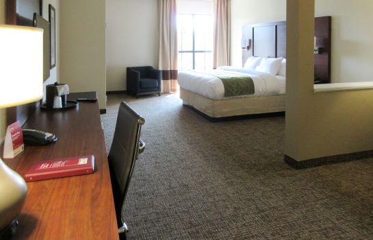 Chambre Comfort Suites Greenville South
