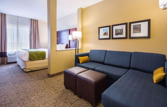 Zimmer Comfort Suites Greenville South