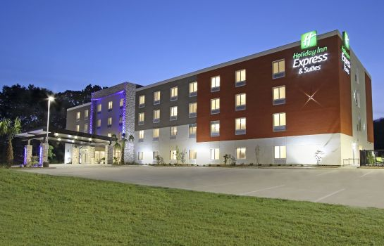 Vista esterna Holiday Inn Express & Suites COLUMBUS NORTH