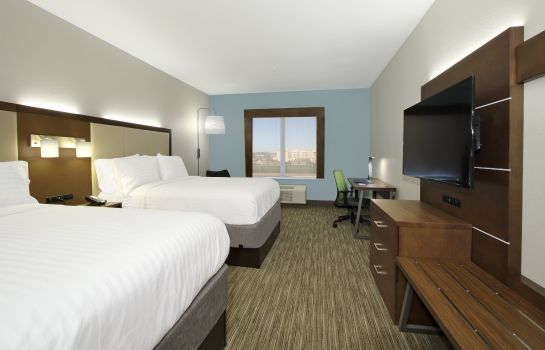 Kamers Holiday Inn Express & Suites COLUMBUS NORTH