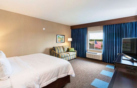 Zimmer Hampton Inn - Suites Duluth North MN