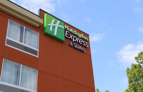 Vista esterna Holiday Inn Express & Suites HENDERSONVILLE SE - FLAT ROCK
