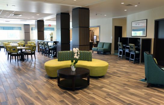 Hotelhalle Holiday Inn Express & Suites HENDERSONVILLE SE - FLAT ROCK