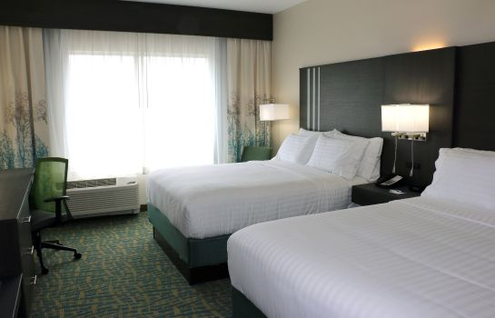 Room Holiday Inn Express & Suites HENDERSONVILLE SE - FLAT ROCK