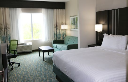 Zimmer Holiday Inn Express & Suites HENDERSONVILLE SE - FLAT ROCK