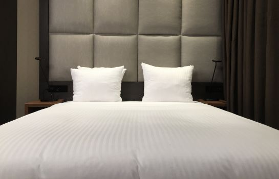 Double room (standard) Hotel Levell