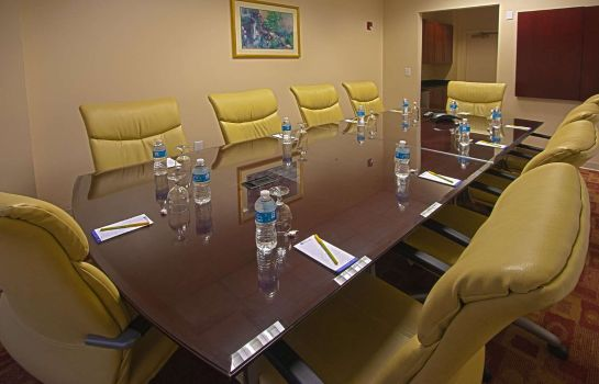 Conference room Hilton Garden Inn Denver Airport