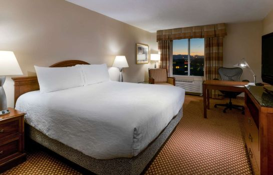 Room Hilton Garden Inn Denver Airport
