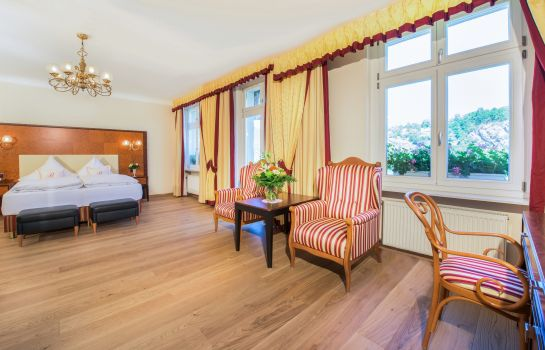 Double room (superior) Bellevue Rheinhotel