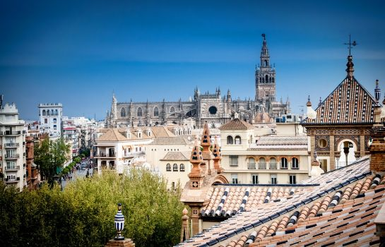 Info Hotel Alfonso XIII a Luxury Collection Hotel Seville