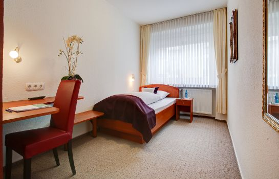Single room (standard) Centro Hotel Consul