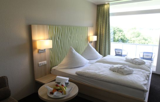 Double room (superior) Seehotel am Stausee
