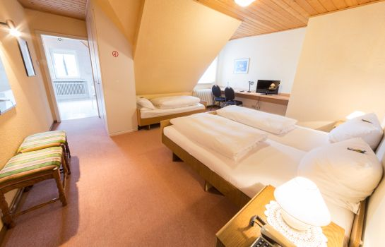 Triple room Thielmann