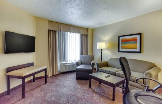 Suite Holiday Inn INDIANAPOLIS CARMEL
