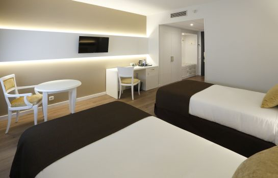 Double room (standard) Sercotel Alfonso XIII.