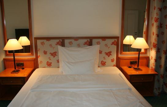Single room (standard) Kleines Hotel