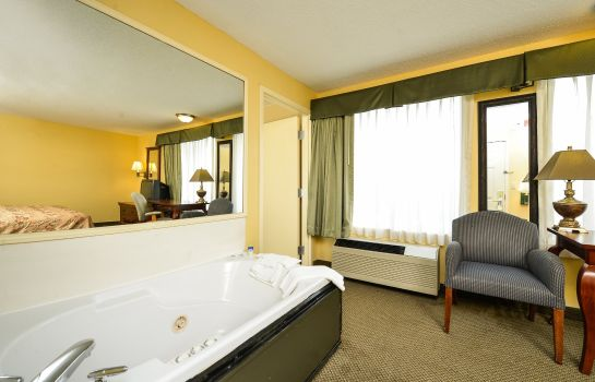 Zimmer BEST WESTERN PLUS SPARTANBURG