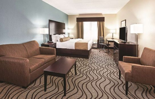 Chambre La Quinta Inn & Suites Knoxville Airport