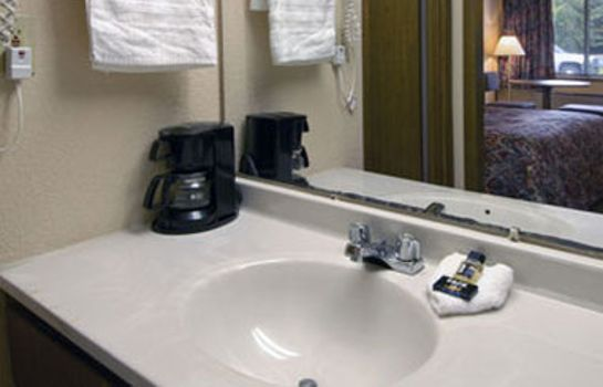 Zimmer TRAVELODGE GREENVILLE