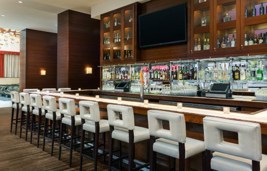 Hotel-Bar Crowne Plaza TIMES SQUARE MANHATTAN