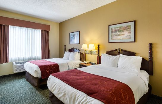 Room Comfort Suites Bush Intercontinental Airport