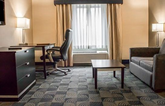 Suite Holiday Inn Express & Suites ALBANY AIRPORT - WOLF ROAD