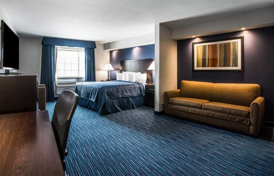 Suite Quality Inn & Suites Downtown