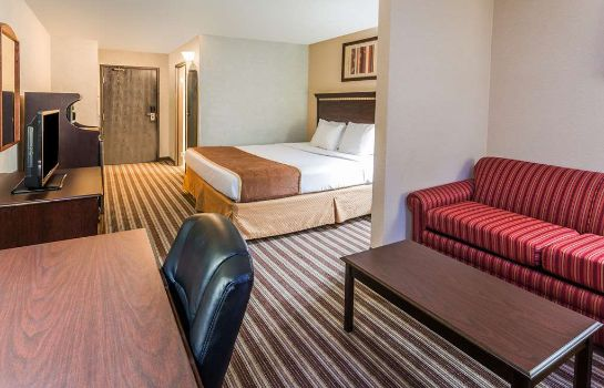Suite DAYS INN & SUITES BY WYNDHAM V