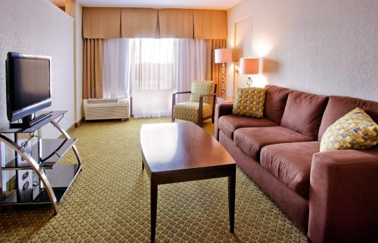Suite Holiday Inn ST PETERSBURG N - CLEARWATER