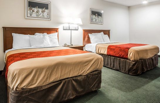 Suite Econo Lodge Inn & Suites Fort Jackson area