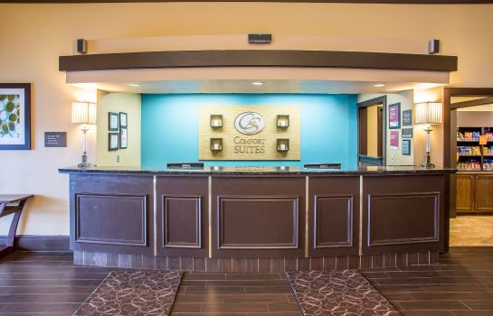 Hol hotelowy Comfort Suites O'Hare Airport