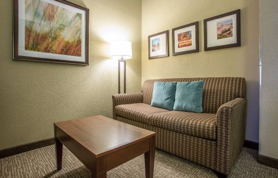 Suite Comfort Suites O'Hare Airport
